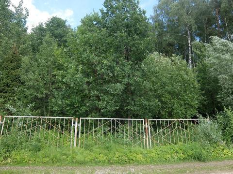 Участок 6 сот. , Щелковское ш, 15 км. от МКАД. - Фото 1