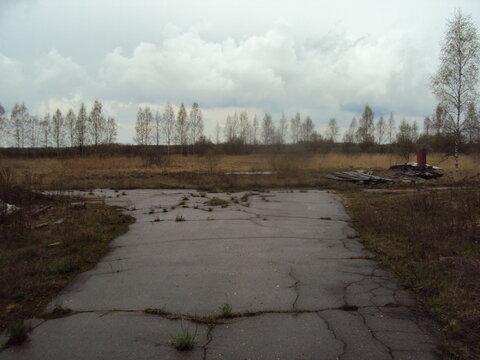 Продам земельный участок в Тверской области - Фото 3