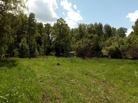 Земля в березой роще - Фото 4