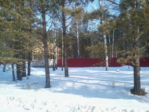 Земельный участок рядом с лесом - Фото 3