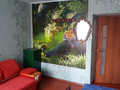 3-к квартира, ул. Попова, 69 - Фото 5