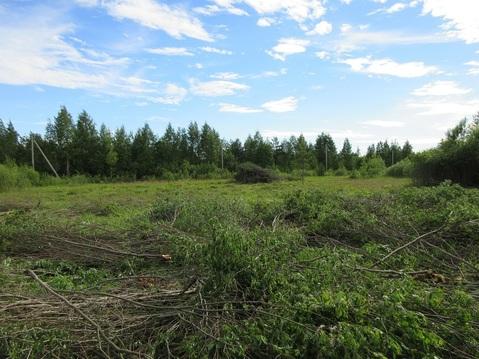 Продается земельный участок 3,7 га в Касимово - Фото 3