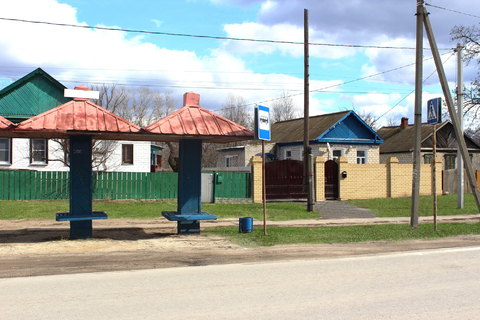Продажа Дома 44 м2, г.Калач-на-Дону, ул.Революционная - Фото 3