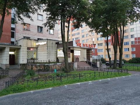 Продажа помещения 640 м.кв. в г. Сестрорецк - Фото 2
