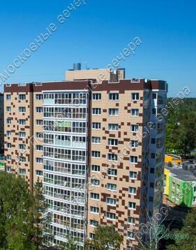 Солнечногорский район, Голубое, 1-комн. квартира - Фото 1