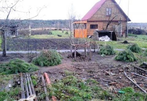 Дом в д.Аверькиево, Клепиковского района, Рязанской области. - Фото 1