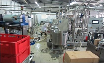 Продам молочную ферму - Фото 1