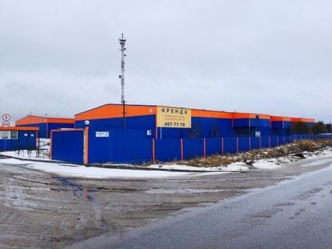 Сдается склад 1512м2 в Тосненском районе п. Тельмана - Фото 3