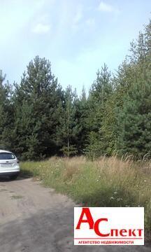 Участок в селе Чертовицы - Фото 3