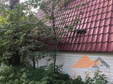 Продам землю в ДНТ Ельцовка - Фото 3