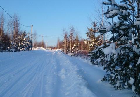 Земельный участок 10 соток в дачном поселке Тульской области . - Фото 4