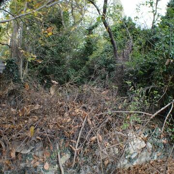 Земельный участок 6 соток в Ялте - Фото 3