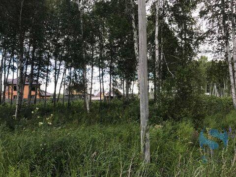 Продажа участка, Тюмень, Деревня Княжево - Фото 3