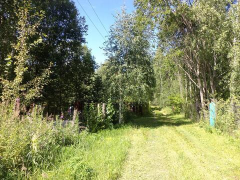 Продам земельный участок в Развитом СНТ - Фото 2