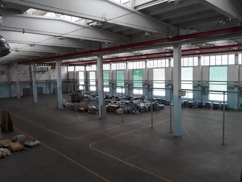 Аренда производственно-складского помещения - Фото 3