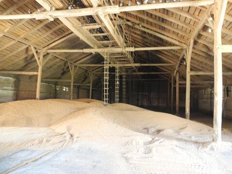 Завод по производству комбикормов - Фото 2