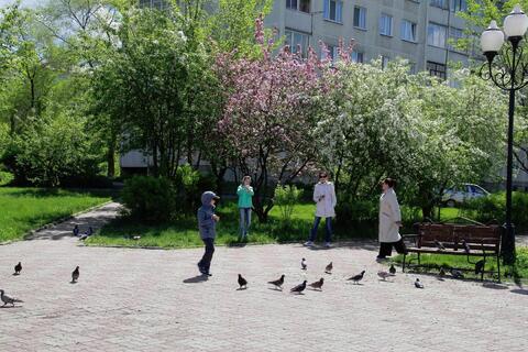 Продам 1 комн. квартиру Ленинского комсомола 13 - Фото 2