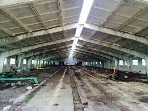 Производственная база, пос. Ржавка - Фото 5