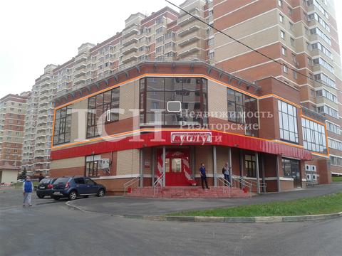 Псн, Щелково, мкр Богородский, 19а - Фото 3
