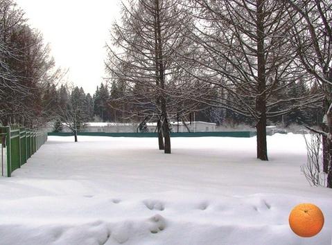 Продается участок, Дмитровское шоссе, 44 км от МКАД - Фото 5