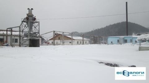 Продажа производственного помещения, Нарва, Манский район, . - Фото 4