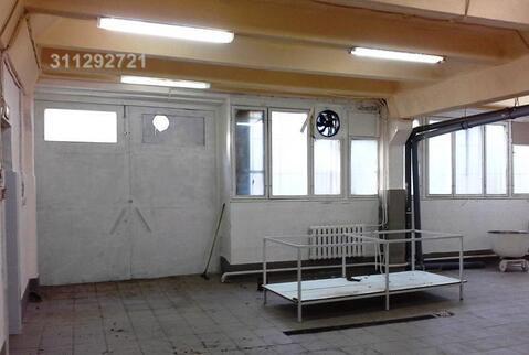 Помещение свободного назначения 1 этаж – 303.6 кв.м, арендная - Фото 3