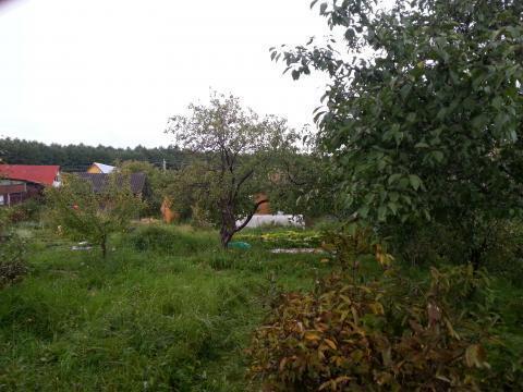 Продам дачу рядом с Серпухов электричество, вода, лес - Фото 3