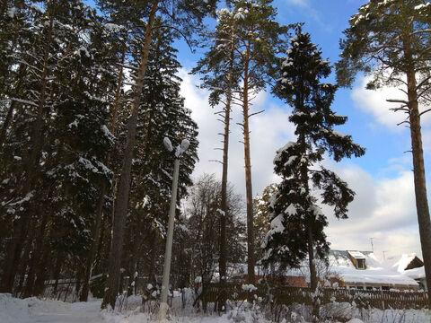 Ильинское ш. 17км. д. Бузланово участок 15 соток ИЖС - Фото 1