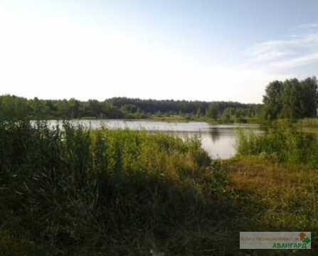Продается земельный участок, Воскресенское, 7 сот - Фото 3