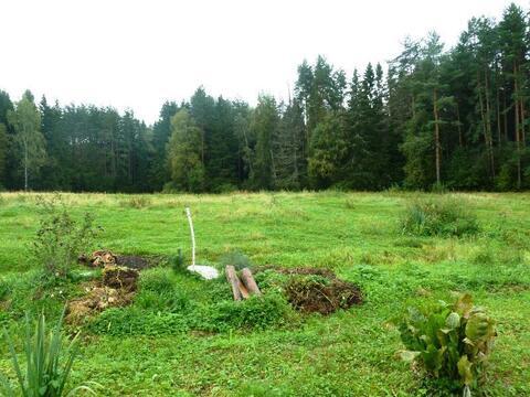 Продается участок 7 соток в поселке Новое-Гришино. - Фото 5
