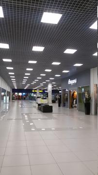 Аренда торгового помещения, Лахтинский просп. - Фото 2