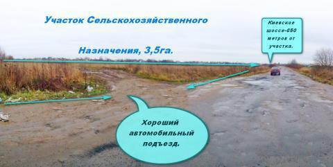 Участок Сельхоз назначения в Малом Верево 3.5га. - Фото 2