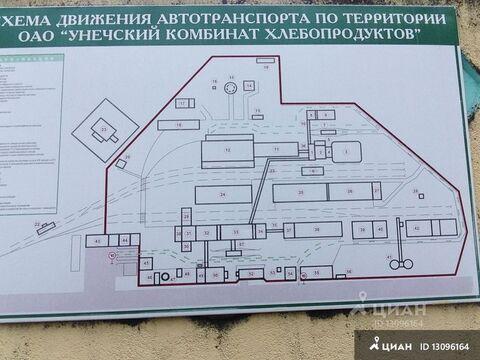 Продажа производственного помещения, Унеча, Клинцовский район, Улица . - Фото 1
