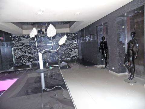 Продам магазин 500 кв.м. на ул. Московской (рядом с ТЦ Европа) - Фото 3