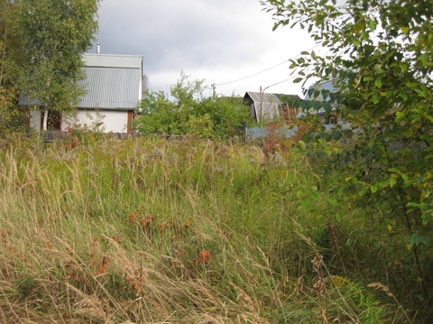 Дачный участок вблизи Ивантеевки - Фото 2