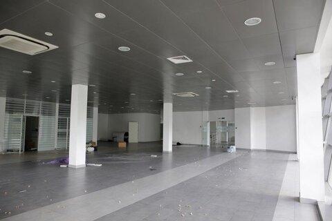 Продажа торгового помещения, м. Проспект Просвещения, Санкт-Петербург - Фото 4