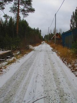 Палкинский торфянник СНТ ротор - Фото 1
