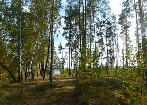 Лаишево, коттедж Ильшат 5500тр - Фото 4