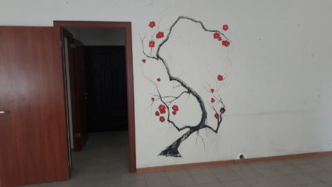 Сдам офис на ул.Лакина (пл.Революции) - Фото 4