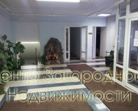 Аренда офиса в Москве, Сухаревская, 295 кв.м, класс B. м. . - Фото 3
