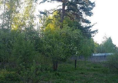 Продается земельный участок 6 соток Московская область Пушкинский район СНТ Невзорово. Участок в собственности менее 3 лет, один собственник, свободная продажа.Участок правильной формы, ровный, огорожен забором. На участке есть хозблок. Соседи живут круглогодично.
