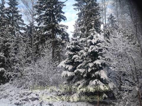 Участок, Минское ш, Можайское ш, 32 км от МКАД, Сивково д. . - Фото 3