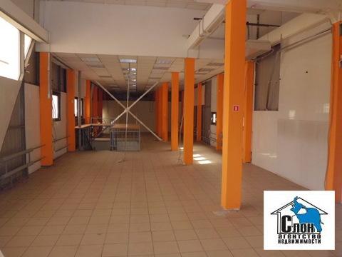Сдаю торговое помещение 260 кв.м. на ул.Гагарина на первой линии - Фото 5