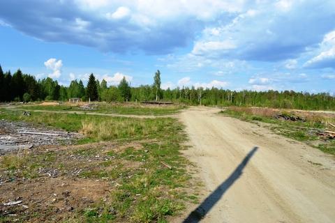 Участок в Ольховке 4,77 Га на берегу водного канала - Фото 4