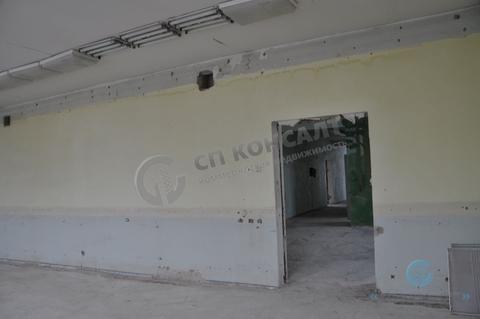 Сдаю помещения на Кирова от 350 кв.м. - Фото 4
