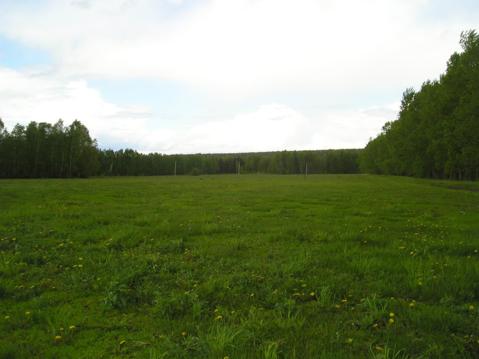 Продам 1 гектар земли Некрасовское - Фото 1