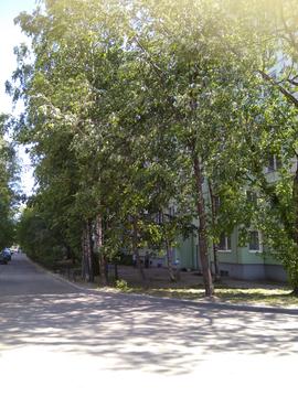 Продажа квартиры, м. Академическая, Мечникова пр-кт. - Фото 2