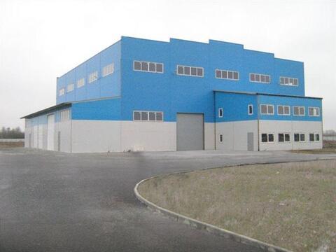 Продам производственное помещение 1300 кв.м, м. Рыбацкое - Фото 1