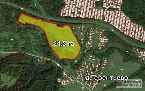 Участок 24га сельскохозяйственого назначения в Волоколамском районе