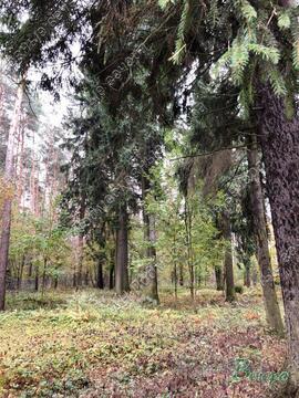 Минское ш. 28 км от МКАД, Голицыно, Участок 18 сот. - Фото 3